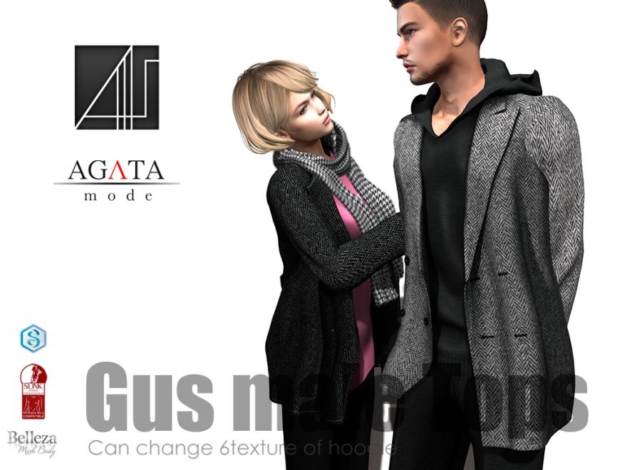 20180123-HME-Gus-4x3-ad