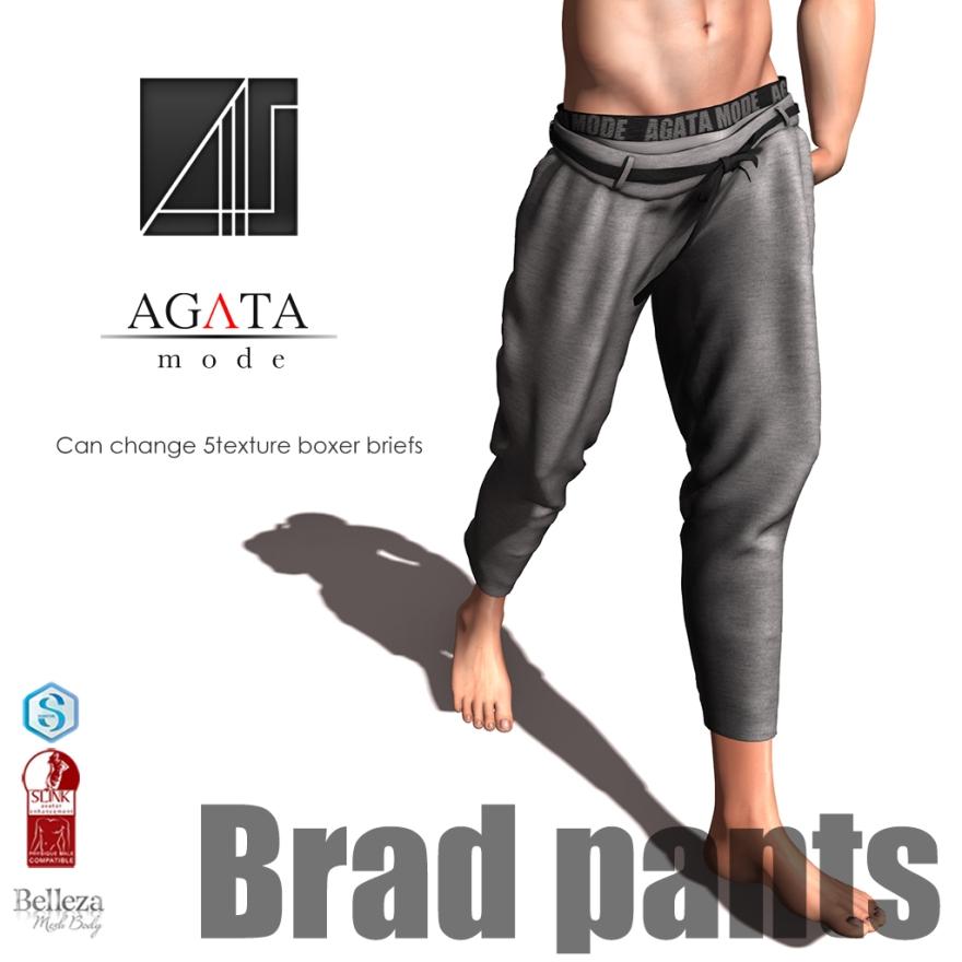 20180323-HME-Brad-ad_1x1